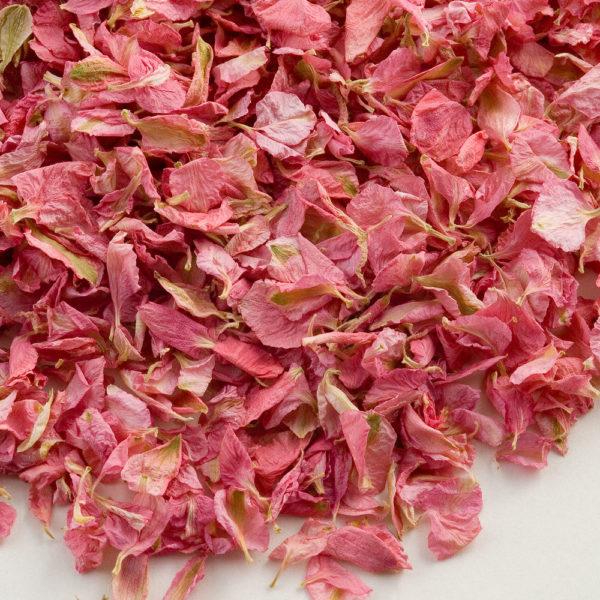 Roze Delphinium Bloemblaadjes